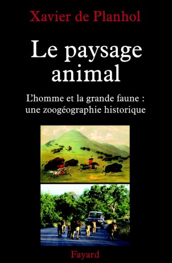 Le paysage animal