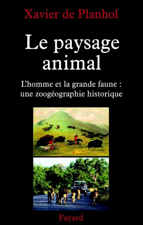 Le paysage animal