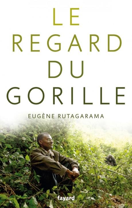 LE REGARD DU GORILLE